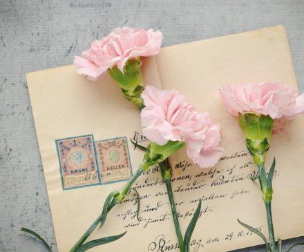 Vanhettunut kirje ja kolme vaaleanpunaista neilikkaa.