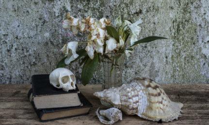Pääkallo kirjojen päällä, nuupahtaneita kukkia ja simpukoita pöydällä.